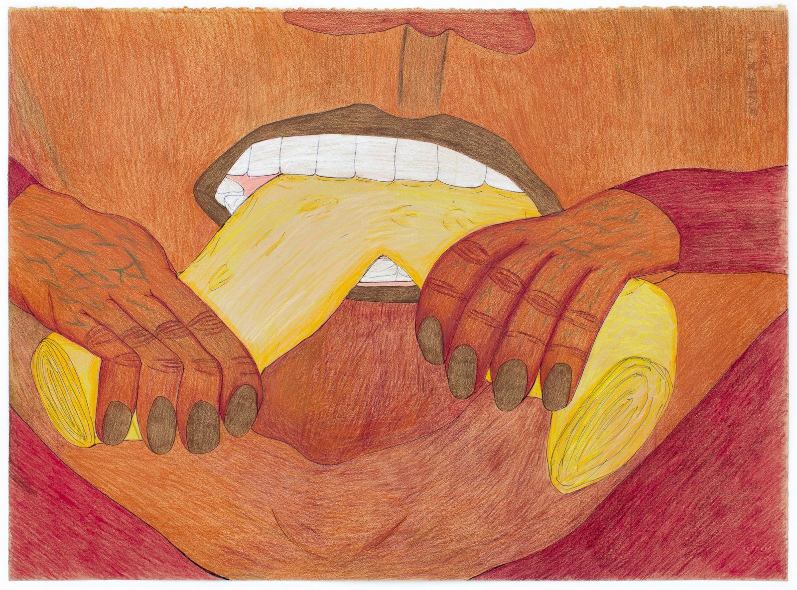 Shuvinai Ashoona - untitled (softening skin)