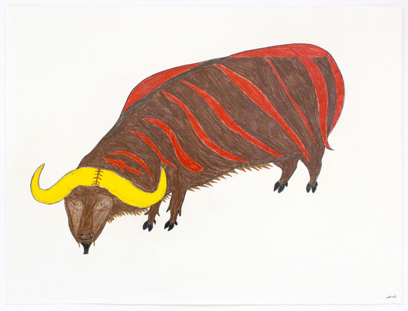William Noah - Untitled (muskox)