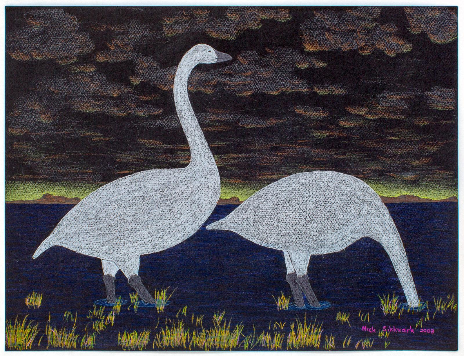 Nick Sikkuark - untitled (swans feeding)
