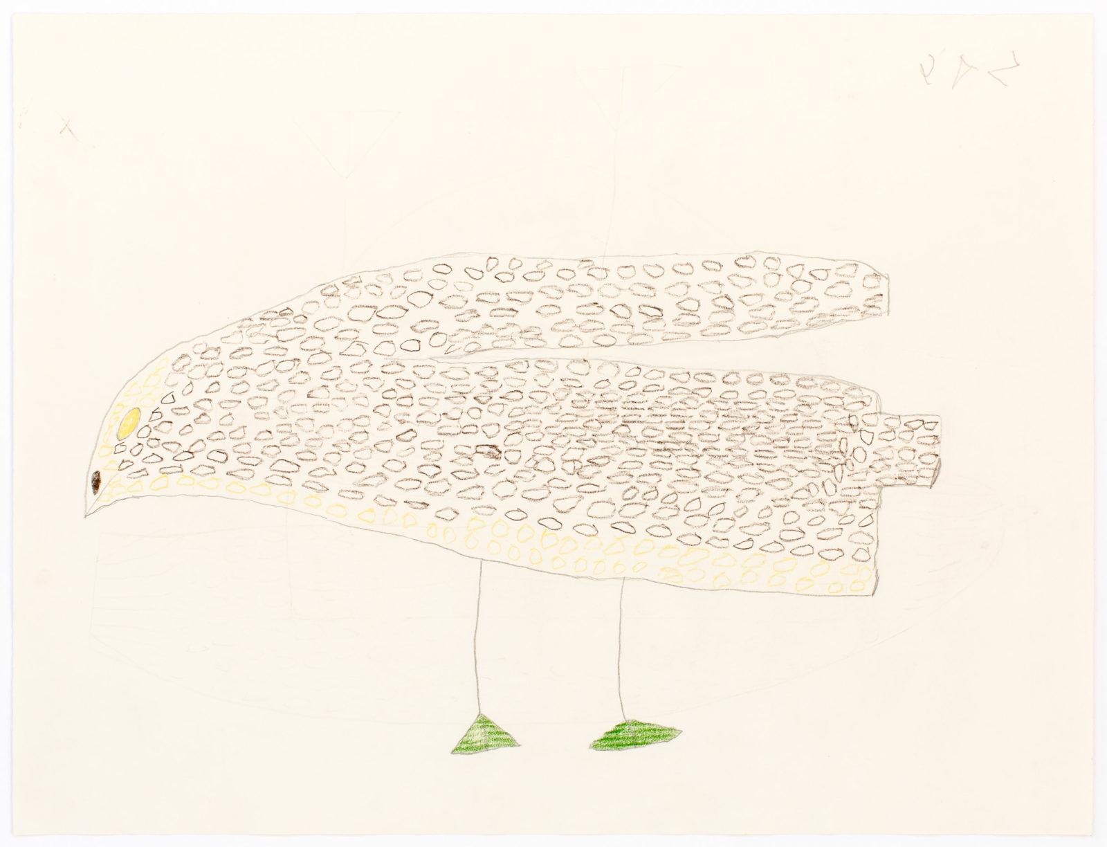 Sheojuk Etidlooie - untitled (bird)