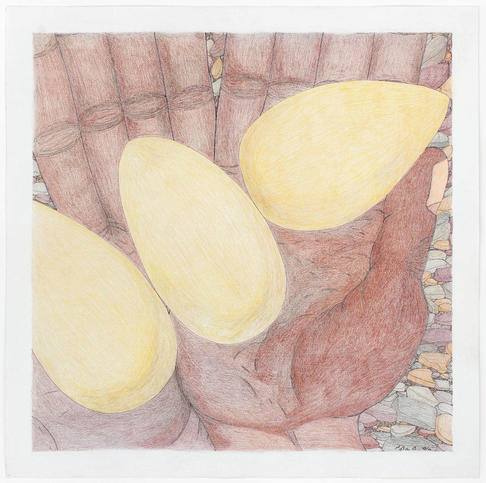 Shuvinai Ashoona - untitled (hands with eggs)